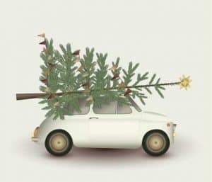 vissevasse - christmas tree & little car
